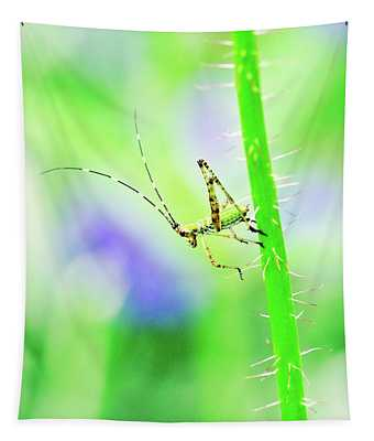 Say Hello To My Little Green Insect Friend Tapestry