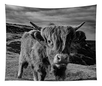 Saying Hello To A Highland Cow At Baslow Edge Black And White Tapestry