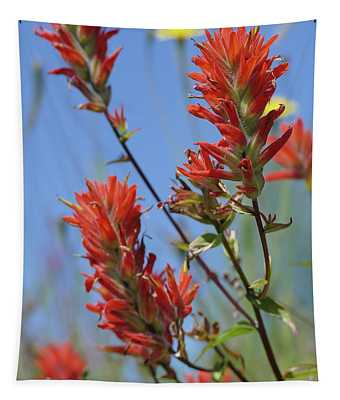 Scarlet Indian Paintbrush At Mount St. Helens National Volcanic  Tapestry