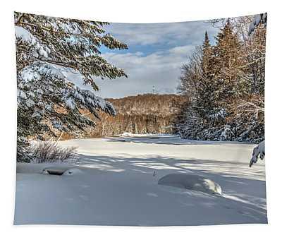 Scenic Moose River Tapestry