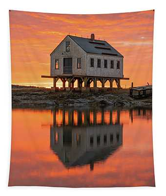 Scorched Symmetry Tapestry