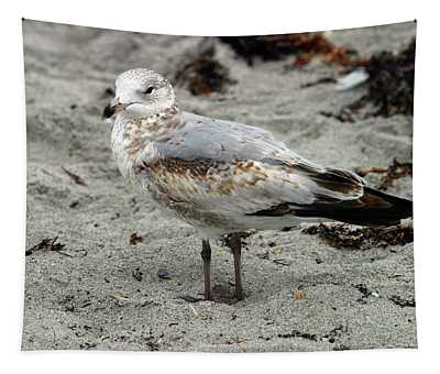Sea Gull Tapestry