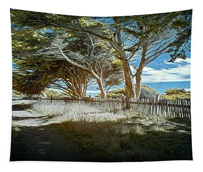 Sea Ranch Coastline Tapestry