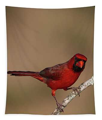 Seeing Red Tapestry