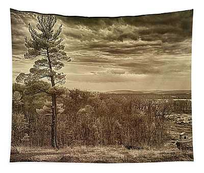 Sepia Sunset Tapestry