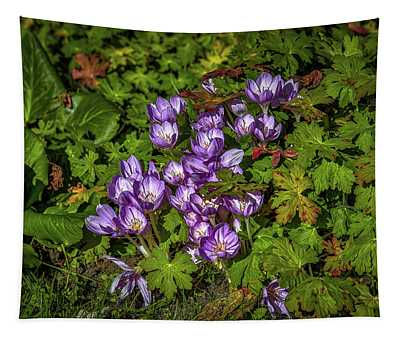 September Crocus #h9 Tapestry