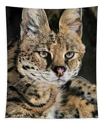 Serval Portrait Wildlife Rescue Tapestry