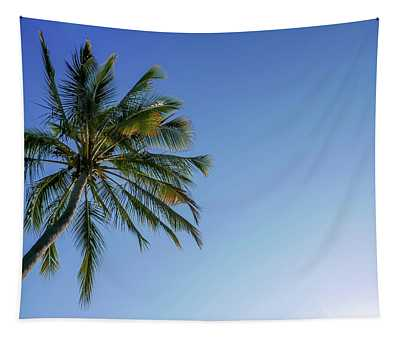 Shades Of Blue And A Palm Tree Tapestry