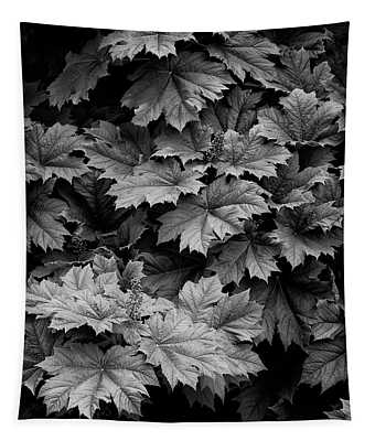 Shadows And Leaves Tapestry