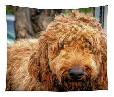 Shaggy Tapestry
