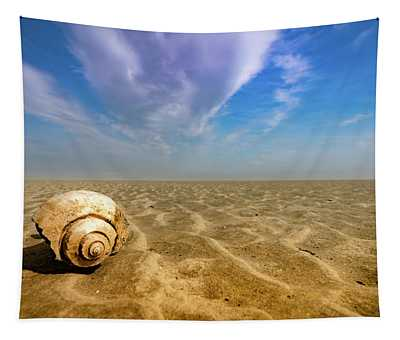 Shell At Hunting Island Tapestry