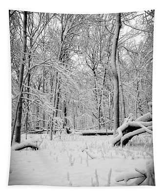 Short Winter Hike Tapestry