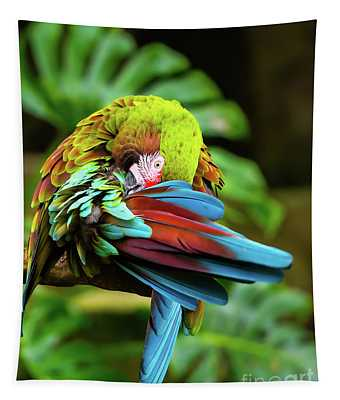 Shy Parrot Tapestry
