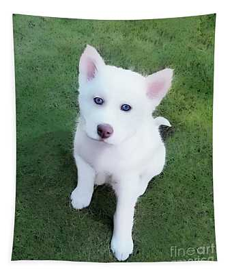 Siberian Husky Puppy A030619 Tapestry