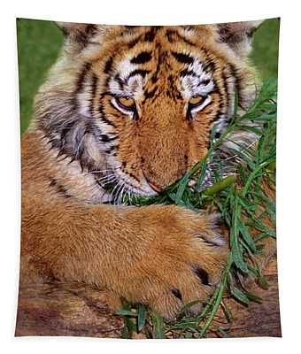 Siberian Tiger Cub Endangered Species Wildlife Rescue Tapestry