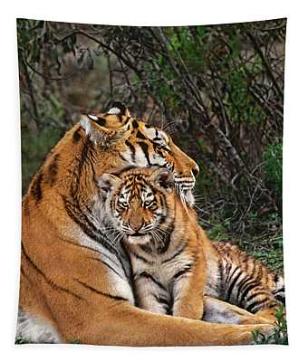 Siberian Tiger Mother And Cub Endangered Species Wildlife Rescue Tapestry