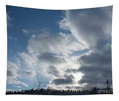 Tapestry featuring the photograph Sky Over Riverstone Park by Matthew Nelson