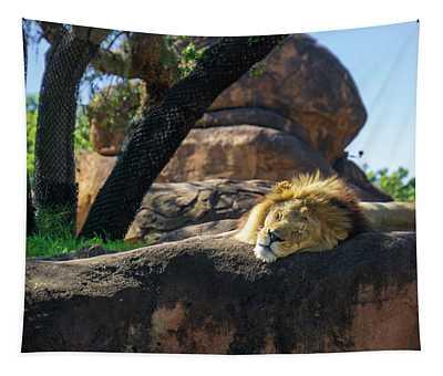 Sleepy Lion Tapestry