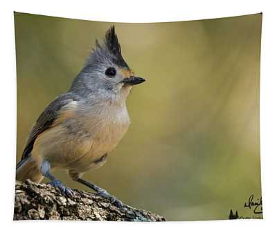 Small Titmouse Tapestry