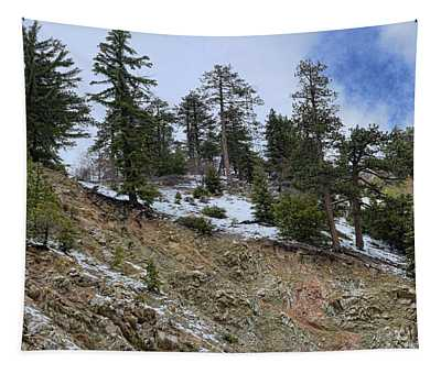 Snow And Rocks And Pines Tapestry