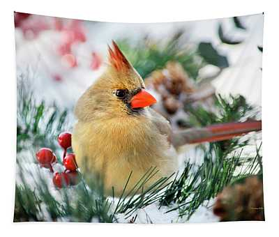 Tapestry featuring the photograph Snow Cardinal by Christina Rollo