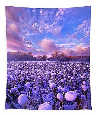 Designs Similar to Snow Flowers by Phil Koch
