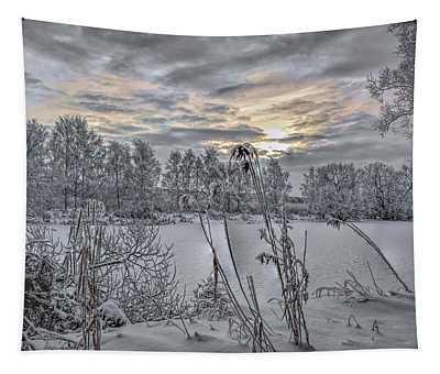 Snow #i3 Tapestry