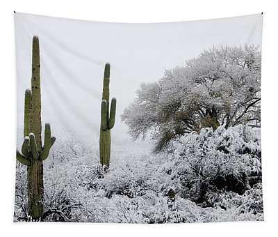 Snow In The Desert Tapestry