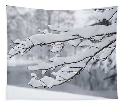 Snow On A Branch Tapestry