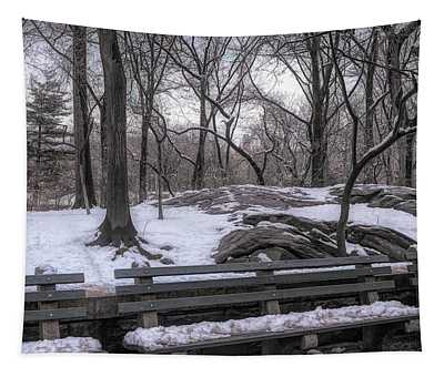 Snowy Benches Tapestry