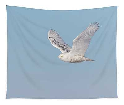 Snowy Owl 2018-23 Tapestry
