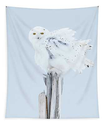 Snowy Owl Feather Shake Tapestry