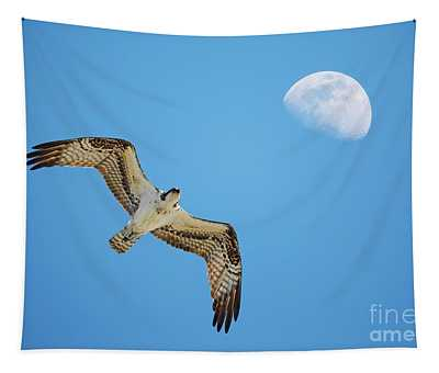 Soaring Osprey And Gibbous Moon Tapestry