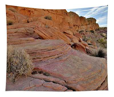 Soft Colors Of Valley Of Fire Tapestry