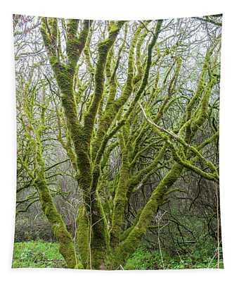Soft Moss Tapestry
