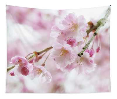 Soft Pink Cherry Blossoms Tapestry