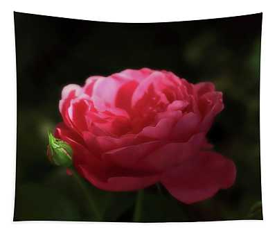 Soft Red Rose In The Evening Light Tapestry