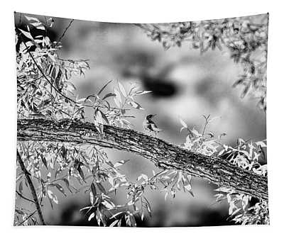 someone coming? BW #i1 Tapestry