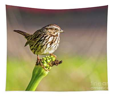 Songster Perching Tapestry
