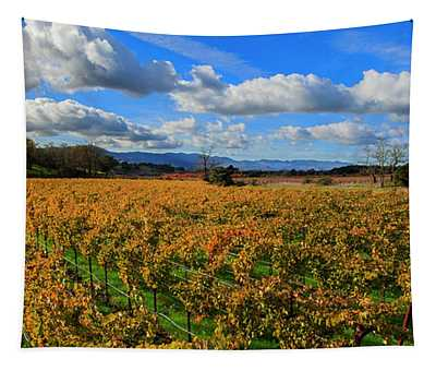 Sonoma Beauty Tapestry