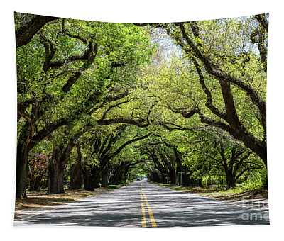 South Boundary Ave Aiken Sc Tapestry