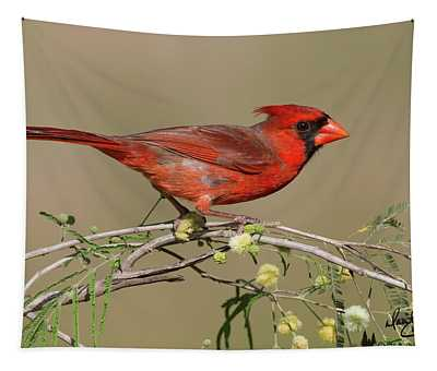 South Texas Cardinal Tapestry