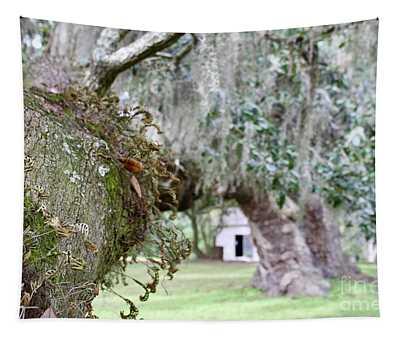 Southern Oaks Tapestry