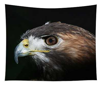 Sparkle In The Eye - Red-tailed Hawk Tapestry