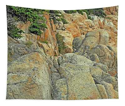 Speckled Boulders Overgrown By Conifers At Bass Harbor Tapestry