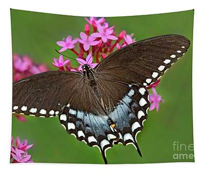 Spicebush Swallowtail Papilio Trollus Tapestry