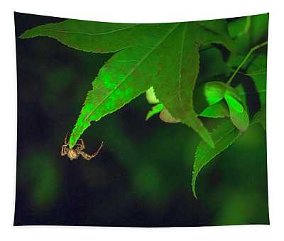 Spider At Night On A Leaf Tapestry