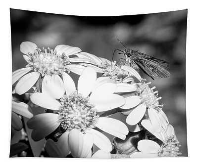 Spotlight To Pollinate Tapestry