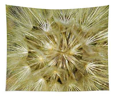 Tapestry featuring the photograph Dandelion Bloom by Mae Wertz