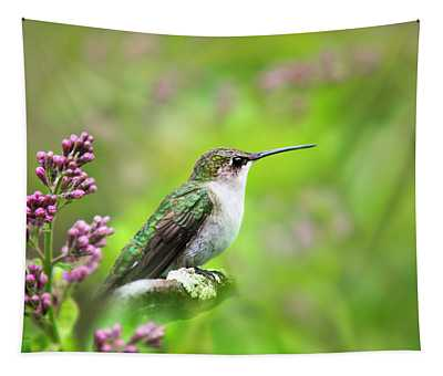 Tapestry featuring the photograph Spring Beauty Ruby Throat Hummingbird by Christina Rollo